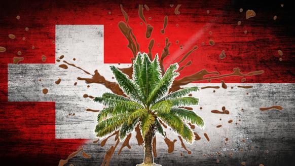 indonésie suisse huile de palme accord