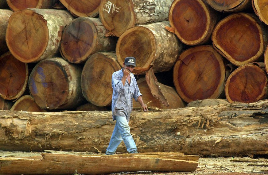 **ONE OF SIX PHOTOS BY DADO GALDIERI** A worker walks past dozens of mahogany logs recently seized by Brazilian Environmental Institute (IBAMA) at the Serra Dourada logging company in the town of Sao Felix do Xingu in the northern state of Para, Brazil, in the Amazon basin, Aug. 13, 2002. Serra Dourada, the biggest company in the region is owned by Osmar Ferreira, the King of Mahogany. (KEYSTONE/AP Photo/Dado Galdieri)