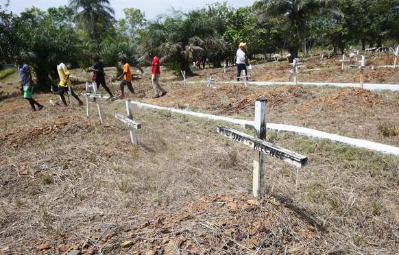 Das Ebola-Virus verursacht beim Menschen das hämorrhagische Ebolafieber. Die Krankheit führt häufig zum Tod.