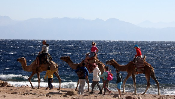 epa08192658 Tourists on a camel ride tour at the Red Sea resort town of Dahab, 550 kilometers east of Cairo in the Sinai Peninsula, Egypt, 04 February 2020.  EPA/KHALED ELFIQI