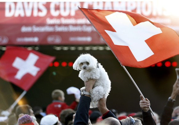 A spectator holds a dog before a ceremony to welcome Switzerland's Davis Cup tennis team members Michael Lammer, Marco Chiudinelli, Stanislas Wawrinka, Roger Federer and captain Severin Luthi  in Lausanne November 24, 2014. Roger Federer beat Richard Gasquet on Sunday to give Switzerland their first Davis Cup title with a 3-1 victory over hosts France in the final.  REUTERS/Denis Balibouse (SWITZERLAND  - Tags: SPORT TENNIS ANIMALS)