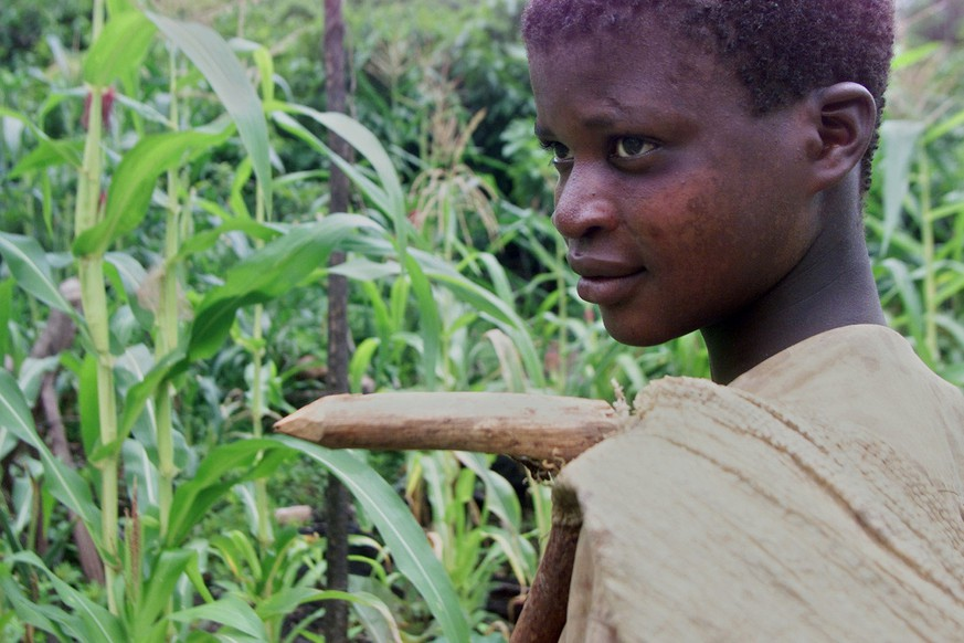 Amadou Kourago, 14, heads out to the field where he works in Noe, Ivory Coast, April 20, 2001. Up to 15,000 children from some of the world's poorest countries are thought to be laboring on plantations across Ivory Coast, producer of 40 percent of the world's cocoa and Africa's largest coffee exporter. (KEYSTONE/AP Photo/Christine Nesbitt) === ELECTRONIC IMAGE ===