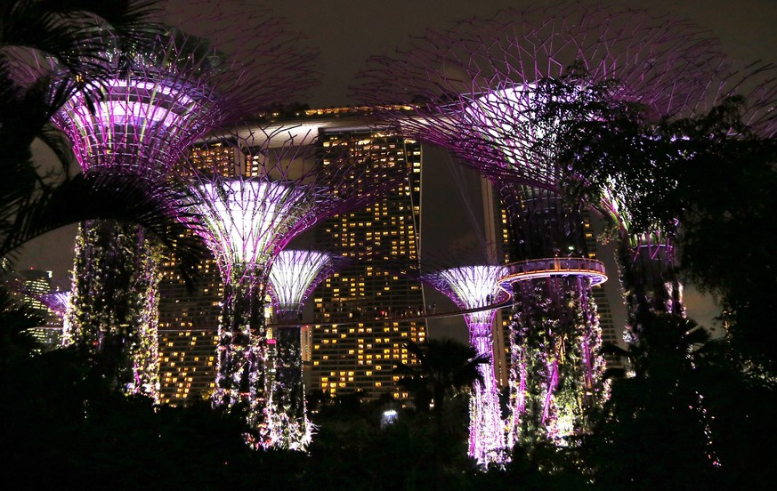 epa04310432 A picture made available on 11 July 2014 of so named Supertrees, built on reclaimed land, during a sound and light show at the Gardens by the Bay, with Marina Bay Sands resort seen in background, in Singapore, 09 July 2014. The 101 hectare park features a grove of ' supertree ' structures with real vegetation creeping up the lit sculptures, that incorporate environmental technologies such as solar, rainwater collection and a conduit for air from the  cooling systems. A walkway allows tourists to journey through the tree-tops and a restaurant is perched inside on of the giant tree's canopy.  EPA/BARBARA WALTON