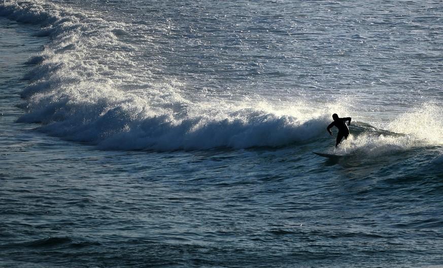 Hai tötet 17-jährige Surferin - Familie muss zusehen
