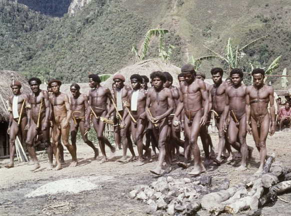 This a 1973 photo of the  Dani Tribe of New Guinea, which is believed to have killed U.S. Anthropologist Michael Rockefeller in 1961, and ate parts of his body. AP Photo)