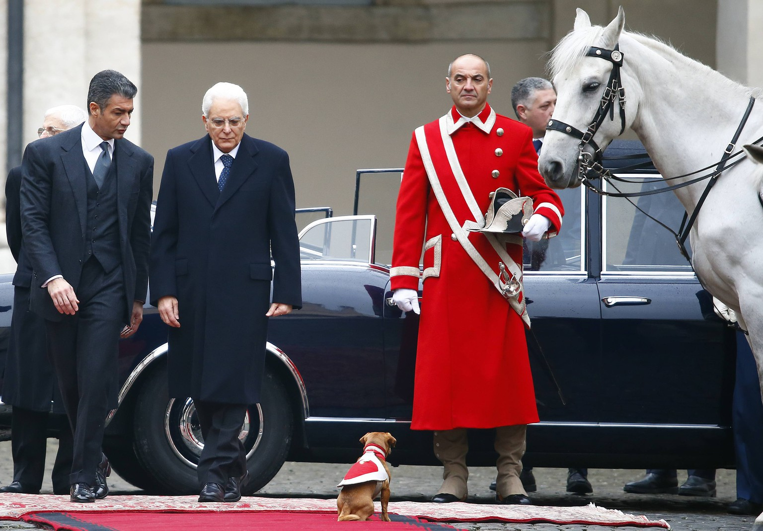 Italy's new President Sergio Mattarella (C) arrives to inspect a guard of honour during a welcoming ceremony, as the Presidential Guards' mascot dog sits on the red carpet, at the Quirinale presidential palace in Rome, February 3, 2015. REUTERS/Tony Gentile (ITALY - Tags: POLITICS TPX IMAGES OF THE DAY)