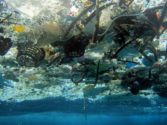This 2008 photo provided by NOAA Pacific Islands Fisheries Science Center shows debris in Hanauma Bay, Hawaii. A study released by the Proceedings of the National Academy of Sciences on Monday, June 30, 2014, estimated the total amount of floating plastic debris in open ocean at 7,000 to 35,000 tons. The results of the study showed fewer very small pieces than expected. (AP Photo/NOAA Pacific Islands Fisheries Science Center)