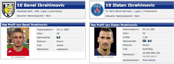 Ibrahimovic transfermarkt.ch