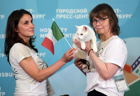 Hermitage Museum veterinarian Anna Kondratieva, left, and press-secretary of the Cats of Hermitage Museum Maria Khaltunen pose for pictures with Achill the cat, who lives in St Petersburg's Hermitage museum, after predicting the result of the opening match of Euro 2020 between teams of Italy and Turkey during an event in St. Petersburg, Russia, Friday, June 11, 2021. (AP Photo)