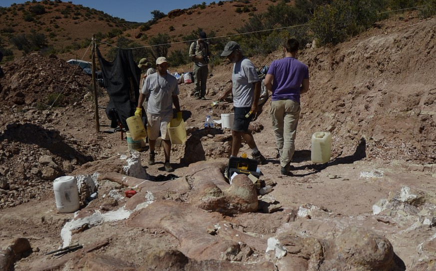 This 2014 photo released on Saturday, May 17, 2014 by the Museo Paletontológico Egidio Feruglio, shows a team of paleontologists working at the site where the bones of a sauropod dinosaur were unearthed, near Trelew, Argentina. Paleontologists from the Museo Paletontológico Egidio Feruglio announced Friday, May 16, 2014, the discovery of what they believe are the fossil remains of the world's largest dinosaur, near Trelew. (AP Photo/Museo Paletontológico Egidio Feruglio)
