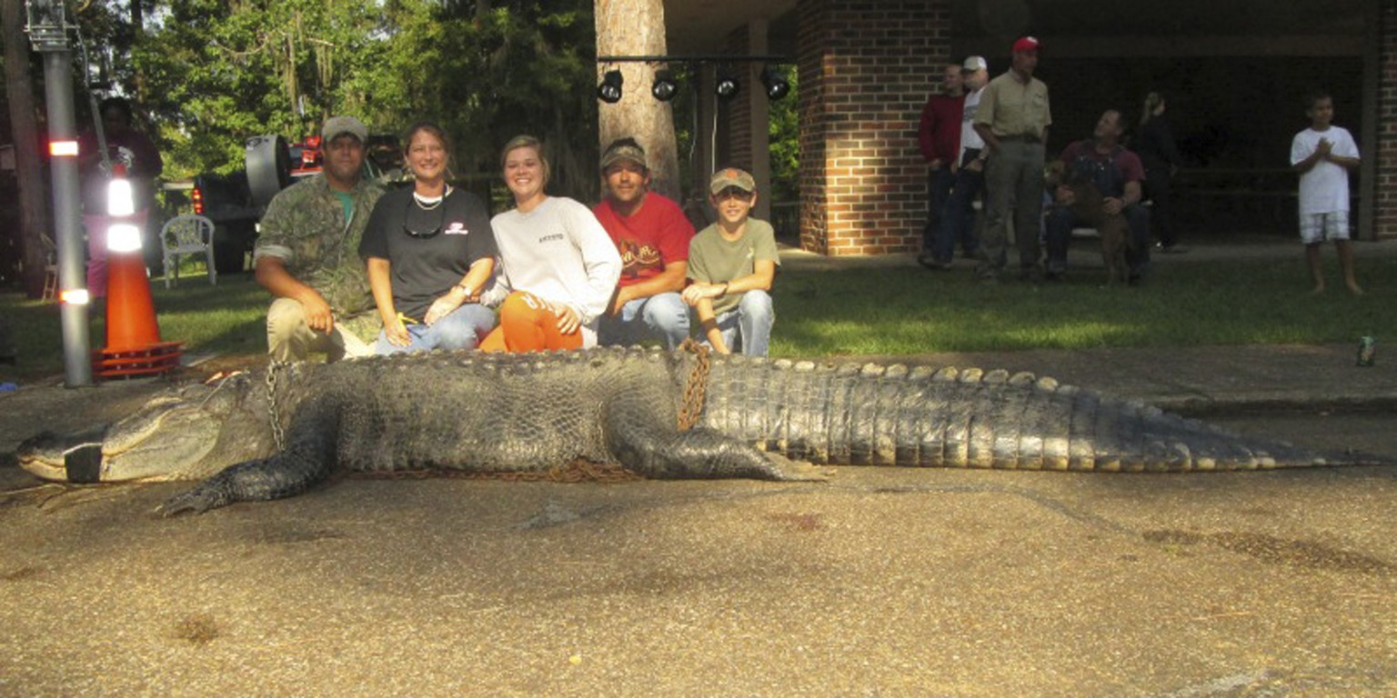 John and Amanda Stokes, brother-in-law Kevin Jenkins and children Savannah and Parker pose with an American alligator measuring 15 feet long and weighing 1,011.5 lbs, a new state record, hauled in from the waters near Millers Ferry, Alabama in this handout photo provided by the Alabama Department of Conservation and Natural Resources, August 18, 2014.   The alligator, caught with a snare hook in a southern Alabama state park early Saturday, was so heavy it required a backhoe to hoist it onto a scale, said Mike Seivering, a state wildlife biologist who supervised the annual regulated alligator hunt.    REUTERS/Alabama DCNR/Handout via Reuters (SOCIETY) NO SALES. FOR EDITORIAL USE ONLY. NOT FOR SALE FOR MARKETING OR ADVERTISING CAMPAIGNS. THIS IMAGE HAS BEEN SUPPLIED BY A THIRD PARTY. IT IS DISTRIBUTED, EXACTLY AS RECEIVED BY REUTERS, AS A SERVICE TO CLIENTS
