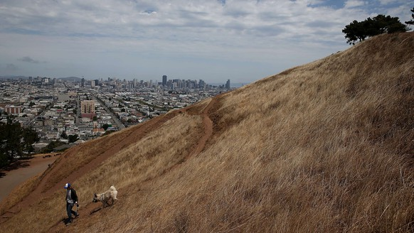SAN FRANCISCO, CA - JULY 16: A woman walks her dog walker on a dried section of Bernal Heights Park on July 16, 2014 in San Francisco, California. As the severe drought in California contiues to worsen, the State's landscape and many resident's lawns are turning brown due to lack of rain and the discontinuation of watering.   Justin Sullivan/Getty Images/AFP== FOR NEWSPAPERS, INTERNET, TELCOS & TELEVISION USE ONLY ==