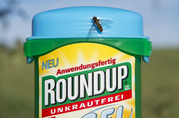 epa06942458 (FILE) - The herbicide Roundup, which contains glyphosate, pictured in a garden in Hoechenschwand, Germany, 18 October 2017 (reissued 11 August 2018). Roundup is manufactured by the Monsanto company, a unit of German pharmaceutical company Bayer AG, in St. Louis, USA. Monsanto was ordered to pay 289 million US dollars by San Francisco's Superior Court of California, USA, because of damages to school groundskeeper Dewayne Johnson who alleged the company's glyphosate-based weed-killers, including Roundup, caused him cancer.  EPA/STEFFEN SCHMIDT