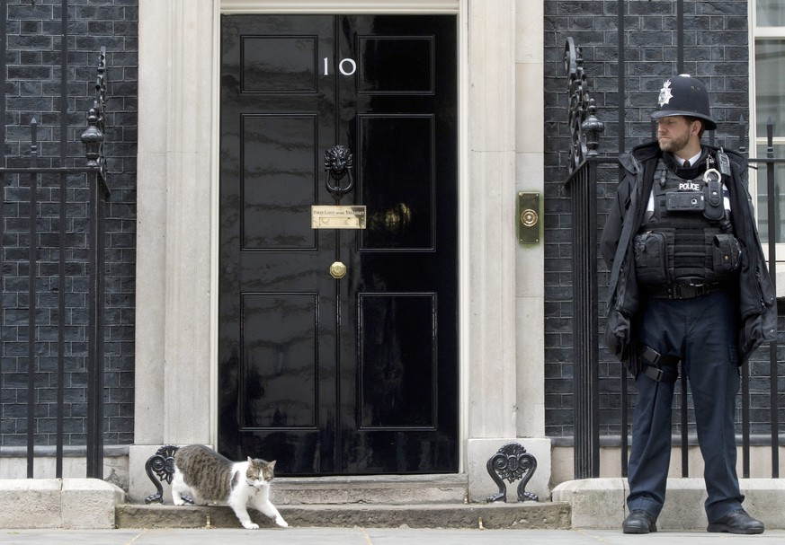 epa04739943 British Prime Minister David Cameron's cat, Chief Mouser to the Cabinet Office, Larry, on the doorstep of The British Prime Minister's London residence, at 10 Downing Street in central London, England, 09 May 2015. The resident Treasury or Downing Street cat has been employed as a mouser and pet since the reign of British King Henry VIII. David Cameron announced on 08 May 2015 that he will retain several key ministers in his new cabinet. Cameron said he will keep George Osborne as chancellor and add the role of first secretary of state, making Osborne the highest-ranking cabinet minister. Foreign Secretary Philip Hammond and Home Secretary Theresa May will also retain their posts, Cameron said.  EPA/HANNAH MCKAY