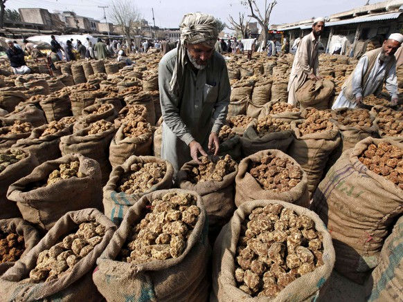 epa07296386 Pakistani vendors sell jaggery made from brown sugar on a roadside in Peshawar, Pakistan, 18 January 2019. Pakistan is the world's sixth largest producer of sugarcane in terms of acreage, and the eighth largest producer of sugar. Sugarcane is grown on approximately 1.1 million hectares and provides the raw material for 88 sugar mills with an annual crushing capacity of over 6.5 million tones. The sugar industry is the country's second largest agriculture-based industry after textiles.  EPA/ARSHAD ARBAB