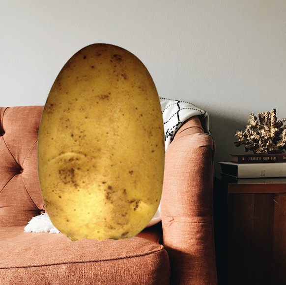 Als puristische Couch-Potato