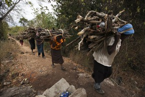 epa04278172 A Picture made available on 24 June 2014 shows Kenyan women carring legal firewoods collected from dead and fallen tree branches from Kibwezi forest on 20 June 2014 in Kibwezi, Kenya. The women collect the woods for burning charcoal and firewoods for selling and self consuption, the forest management issues limited licences to the locals to collect the firewoods to discourage illegal tree cutting. Illegal trade in wildlife and timber products is said to be financing criminal and militia groups threatening security and sustainable development according to a new report from the United Nations Environment Programme (UNEP) and INTERPOL. Somali radical Islamist group al-Shabaab operating in East Africa is estimated to make between 38 and 56 million US dollars per year from illegal trade in charcoal, says the report. The report was released during the launch of the Rapid Response Assessment on Wildlife Trade in the ongoing United Nations Environment Assembly (UNEA)  conference at the UNEP headquaters in Niarobi, Kenya 24 June 2014.  EPA/DANIEL IRUNGU