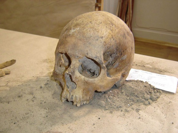 Photo from August 2005 showing the skull discovered in a cathedral in Frombork, north Poland. The skull probably belonged to famed 16th-century astronomer Nicolaus Copernicus - the most serious evidence is a blowmark above the left eye, visible as a scar on portraits of the astronomer.  EPA/Wojciech Gajewski POLAND OUT