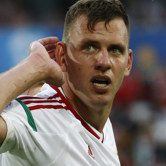 epa05364738 Adam Szalai of Hungary celebrates after scoring the 1-0 goal during the UEFA EURO 2016 group F preliminary round match between Austria and Hungary at Stade de Bordeaux in Bordeaux, France, 14 June 2016.  (RESTRICTIONS APPLY: For editorial news reporting purposes only. Not used for commercial or marketing purposes without prior written approval of UEFA. Images must appear as still images and must not emulate match action video footage. Photographs published in online publications (whether via the Internet or otherwise) shall have an interval of at least 20 seconds between the posting.)  EPA/RUNGROJ YONGRIT   EDITORIAL USE ONLY