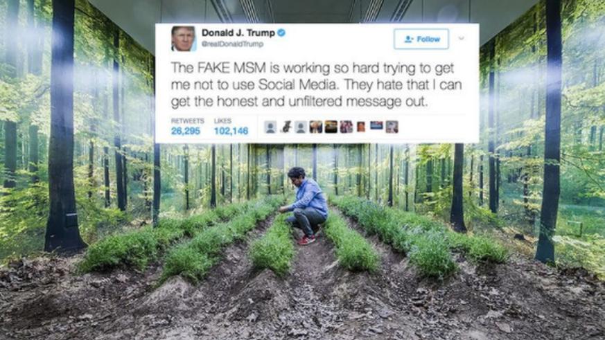 Trump will mit Solar-Mauer an mexikanischer Grenze Geld einnehmen