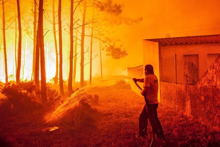 Zivilschutz: Mindestens 27 Tote bei Waldbränden in Portugal
