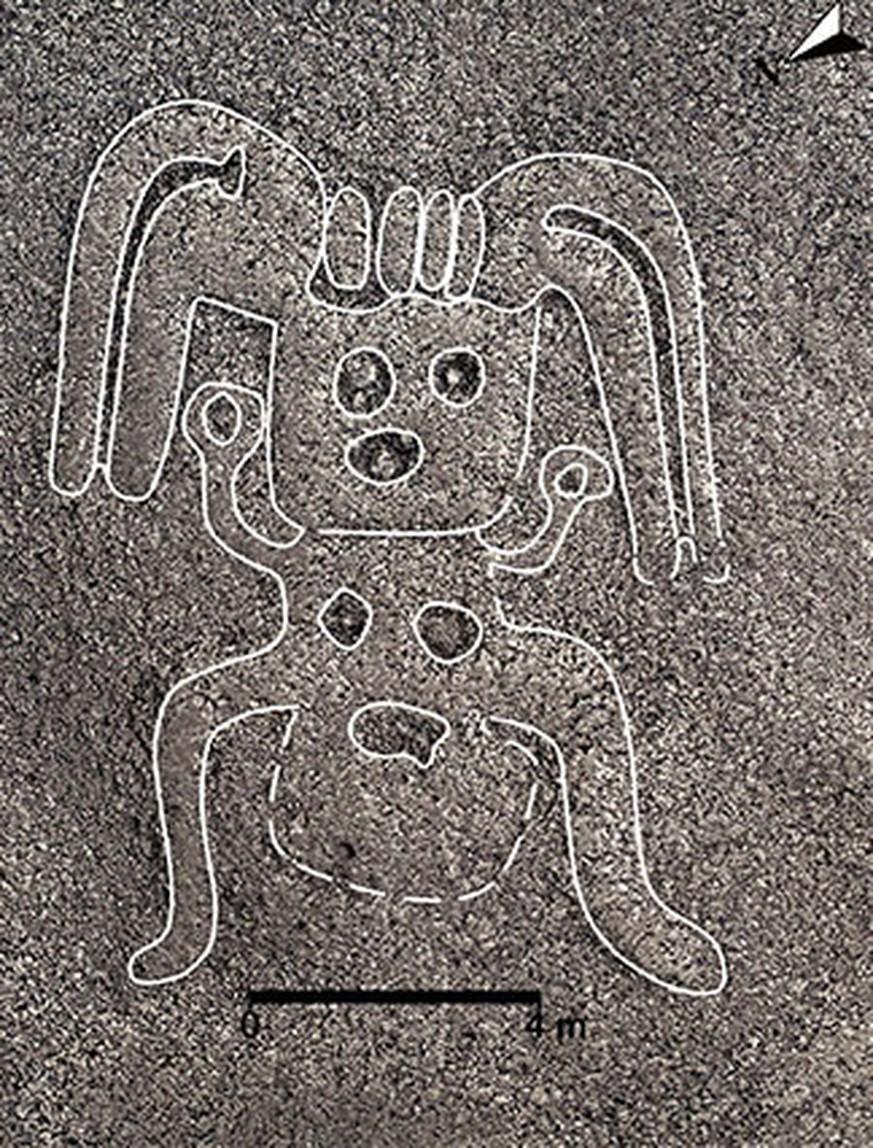 Japanische Forscher entdecken neue Nazca-Linien