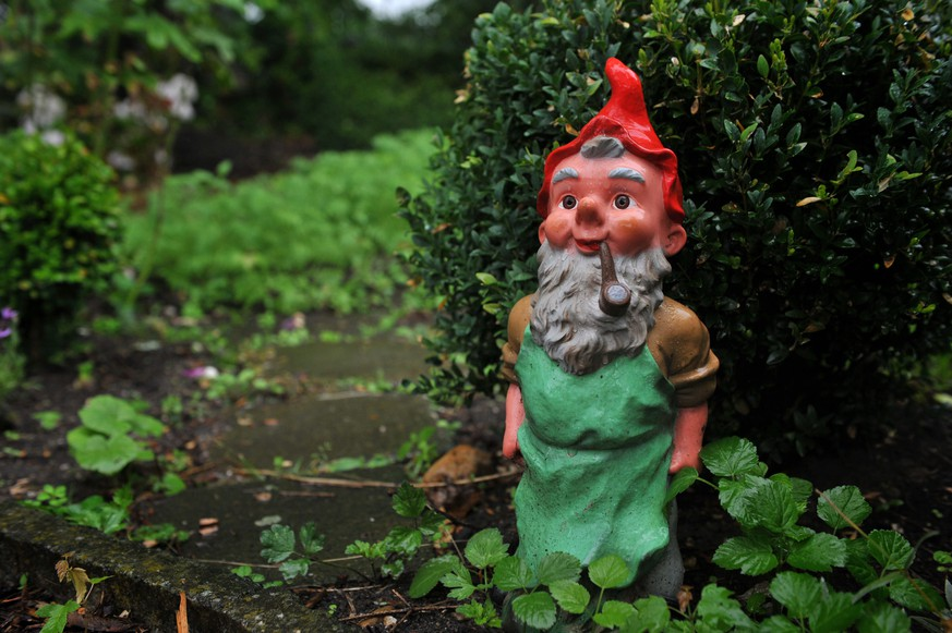 epa04304936 A garden gnome with a pipe stands in the allotment garden club 'Bebericher Grund' in Viersen, Germany, 08 July 2014. Bebericher Grund is one of three North Rhine-Westphalian finalists in the Allotment Garden Championships as part of the German-wide competition 'Gardens in Urban Planning'.  EPA/KATHARINA HOELTER