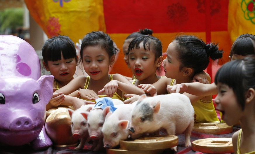 Filipino Chinese girls play with live Teacup pigs, a rare pet in the country, ahead of the Chinese New Year celebrations Friday, Feb. 1, 2019, at Manila's Lucky Chinatown Plaza in Manila, Philippines. This year is the Year of the Earth Pig in the Chinese Lunar calendar and is supposed to represent abundance, diligence and generosity. (AP Photo/Bullit Marquez)