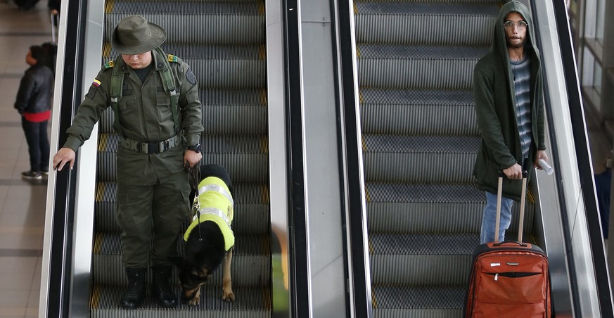 Officer Jose Rojas and drug dog Sombra patrol at the El Dorado airport in Bogota, Colombia, Thursday, July 26, 2018. After her six hour shift is over, Sombra is transported in a van with tinted windows back to her kennel. She is usually accompanied by two armed guards. (AP Photo/Fernando Vergara)