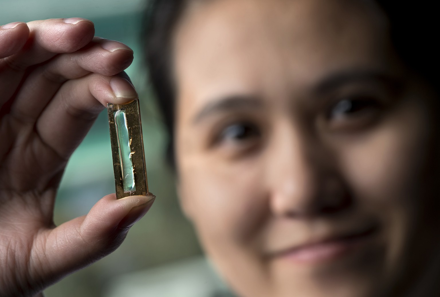 UCI chemist Reginald Penner and doctoral student Mya Le Thai, shown, have developed a nanowire-based battery technology that allows lithium ion batteries to be recharged hundreds of thousands of times. 