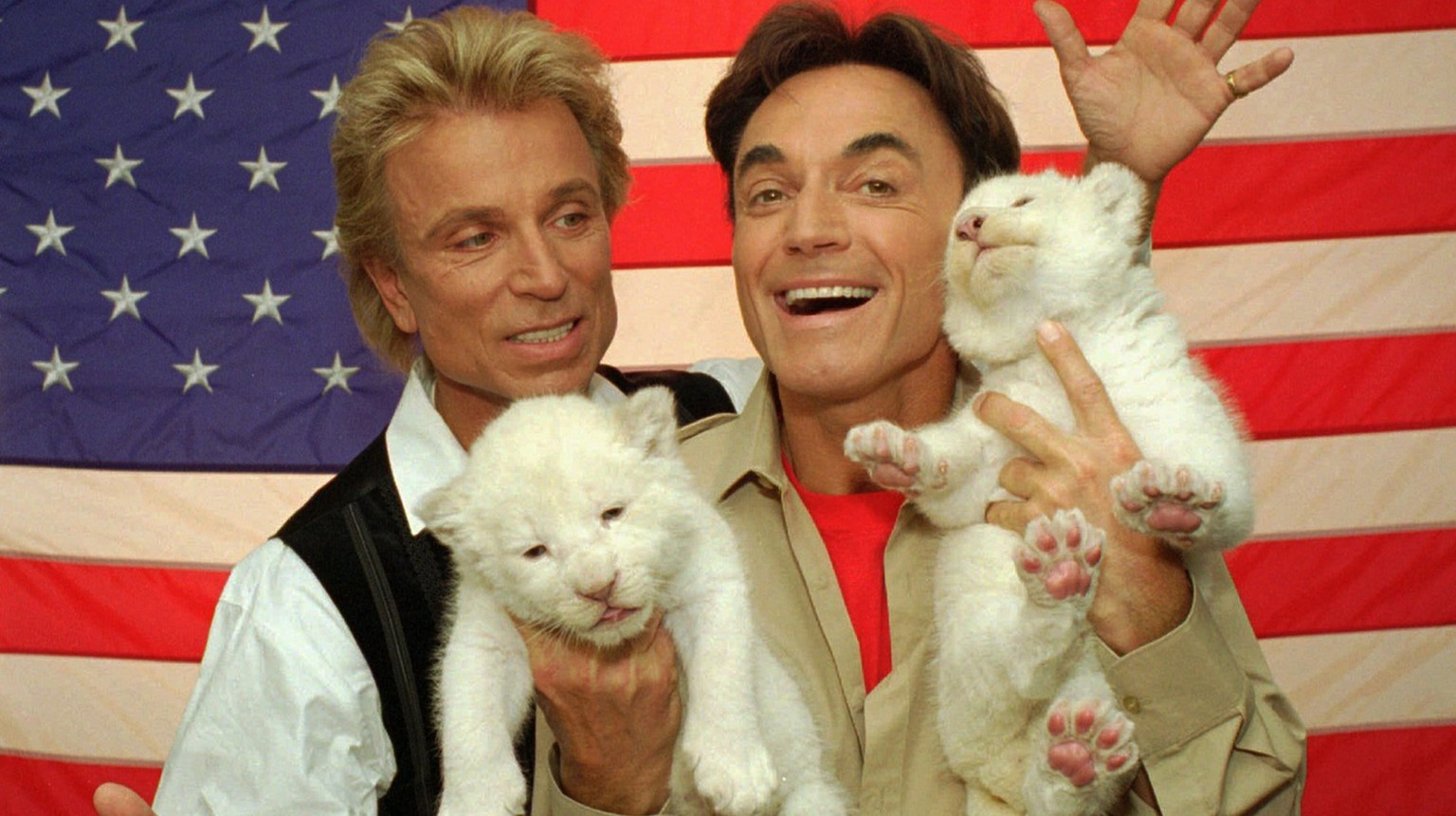 Two rare, 18-day-old white lion cubs squirm their way through a photo session with their new American hosts, illusionists Siegfried, left, and Roy, Thursday, May 2, 1996, in Las Vegas. A tiger attacked magician Roy Horn of the duo ''Siegfried and Roy'' during a Friday night performance at The Mirage hotel-casino, authorities said. Roy was attacked at the throat, said Clark County Fire spokesman Bob Leinbach. He was taken to University Medical Center; Leinbach did not know his condition. (KEYSTONE/AP Photo/Lennox McLendon)