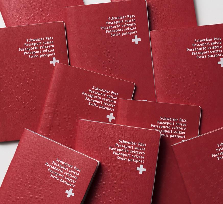 Umfrage zeigt: Selbst Bürgerliche finden Hürden bei Einbürgerung zu hoch