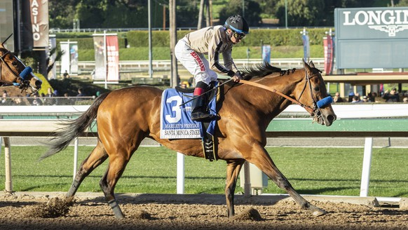 In this image provided by Benoit Photo, Marley's Freedom, with Drayden Van Dyke aboard, wins the Grade II, $200,000 Santa Monica Stakes horse race Saturday, Feb. 16, 2019, at Santa Anita Park in Arcadia, Calif. (Benoit Photo via AP)