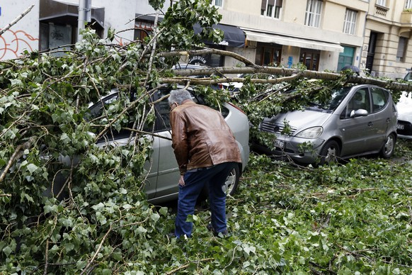 Drago Ban inspects the damage to his car from fallen branches of a tree, in Zagreb, Croatia, Monday May 13, 2019. Stormy winds have uprooted trees, knocked over traffic lights and disrupted traffic in Croatia, injuring two people and prompting authorities on Monday to advise people to stay indoors. (AP Photo/Darko Bandic)