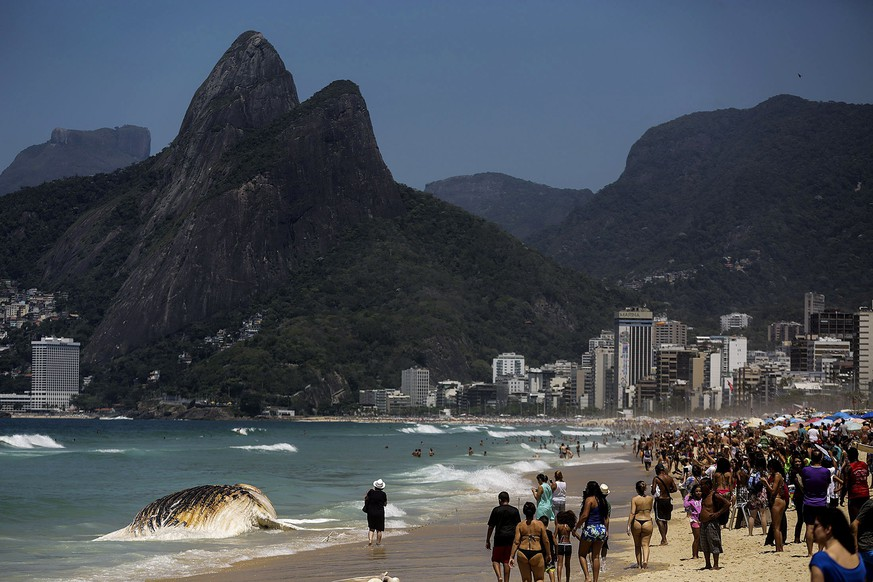 epa06331531 A group of people observe a dead whale that washed up on the tourist beach of Ipanema in Rio de Janeiro, Brazil, 15 November 2017. The humpback whale weighs about 30 tons and authorities have urged beachgoers to stay away from the animal. Beachings are not uncommon along the coast of Brazil as this is a normal migration route for whales.  EPA/Antonio Lacerda