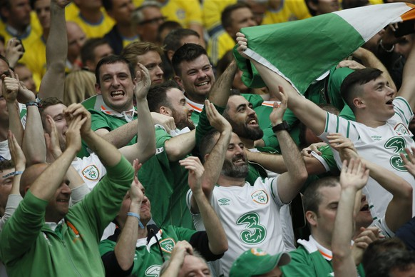 epa05362291 Irish fans react after Wes Hoolahan of Ireland scored the 1-0 during the UEFA EURO 2016 group E preliminary round match between Ireland and Sweden at Stade de France in Saint-Denis, France, 13 June 2016.