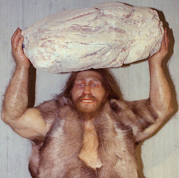 Filer of October 1996 shows a replica of a Neanderthal man made by the Parisian workshop of  Elisabeth Dayner displayed at the Neanderthals museum in Mettmann, western Germany. A sample from an original Neanderthal man bone produced DNA that has led scientis ts from the Zoological Institute at the University of Munich to say that Neanderthals are a different species than the early humans who swept them aside in Europe and western Asia. (AP Photo/Heinz Ducklau)