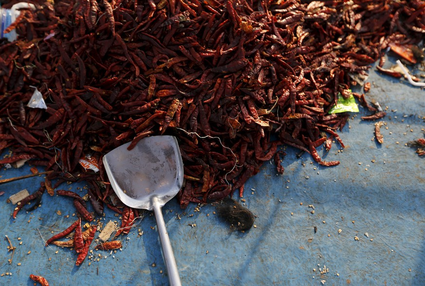 A dried chili as seen inside an abandoned boat which carried Rohingya and Bangladeshi migrants from Thailand, is found off the coast near the city of Kuta Binje, Indonesia's Aceh Province May 20, 2015.  Malaysia and Indonesia issued a joint statement on Wednesday saying they will continue to offer international assistance to 7,000 migrants adrift at sea and assist them with