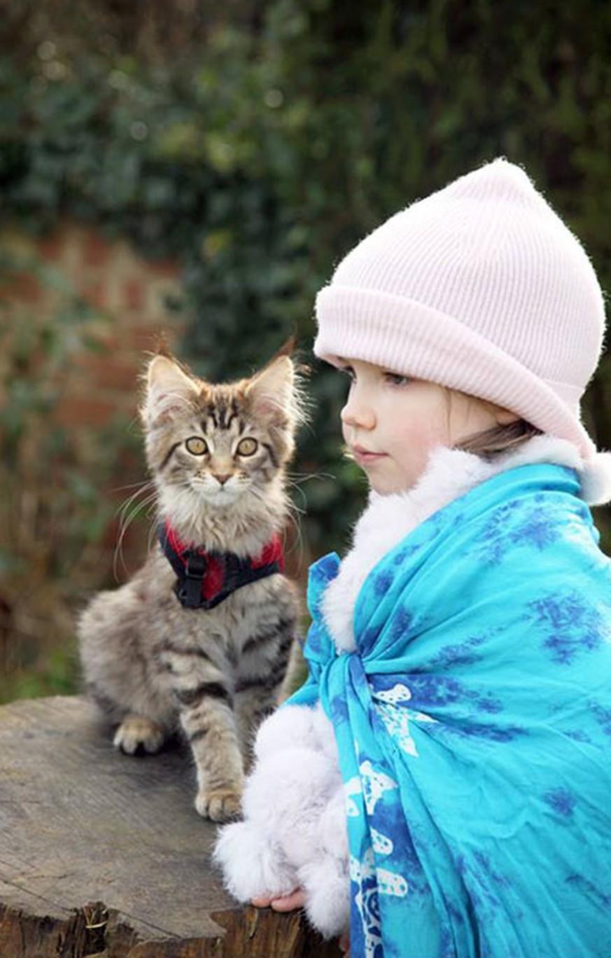 Wie Ein Kleines Autistisches Mädchen Dank Ihren Katzen Aufblüht