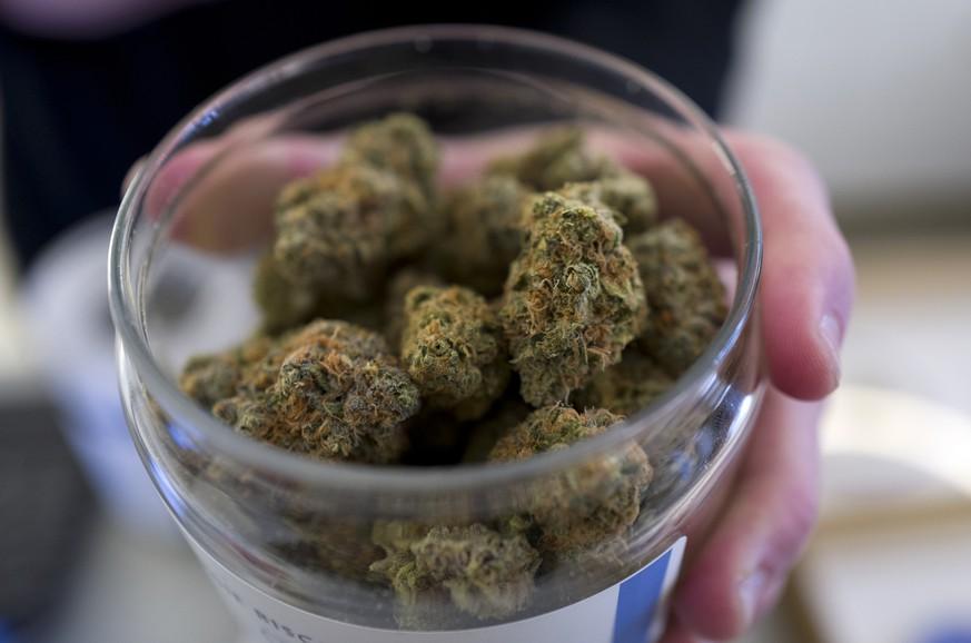 Neue Studie zeigt: Cannabis kann vermutlich noch viel mehr, als wir dachten