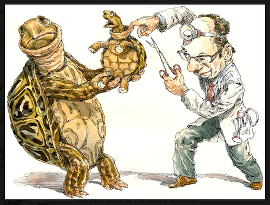 Ihr streitet über die Vorhaut? Wir fragen den Urologen