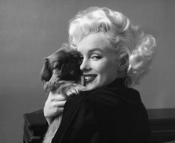 Mit Liebe Zum Hund 13 Geniale Zitate Von Prominenten Watson