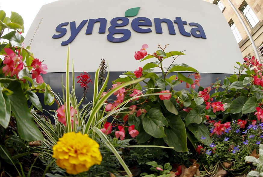 Flowers grow in front of Swiss agrochemicals maker Syngenta's logo at the company's headquarters in Basel in this August 19, 2015 file photo.  Syngenta AG rejected ChemChina's offer to buy the Swiss agricultural chemicals group in a deal valued at about $42 billion, citing regulatory concerns, Bloomberg reported on November 13, 2015. Picture taken August 19, 2015. REUTERS/Arnd Wiegmann/Files