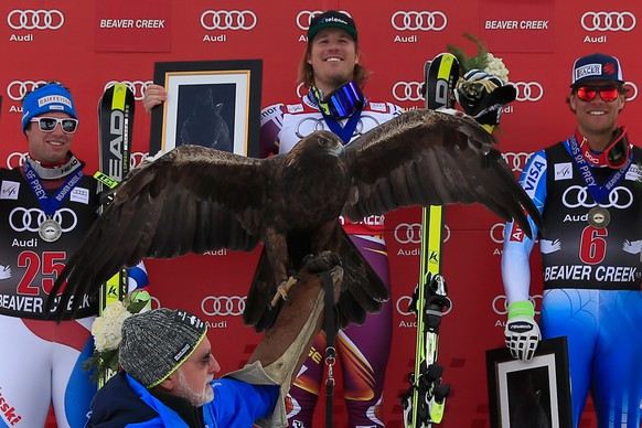 BEAVER CREEK, CO - DECEMBER 05:  A golden eagle is displayed as (L-R) Beat Feuz of Switzerland in second place, Kjetil Jansrud of Norway in first place and Steven Nyman of the United States in third place take the podium for the Audi FIS World Cup Men's Downhill Race on the Birds of Prey course on December 5, 2014 in Beaver Creek, Colorado.  (Photo by Doug Pensinger/Getty Images)