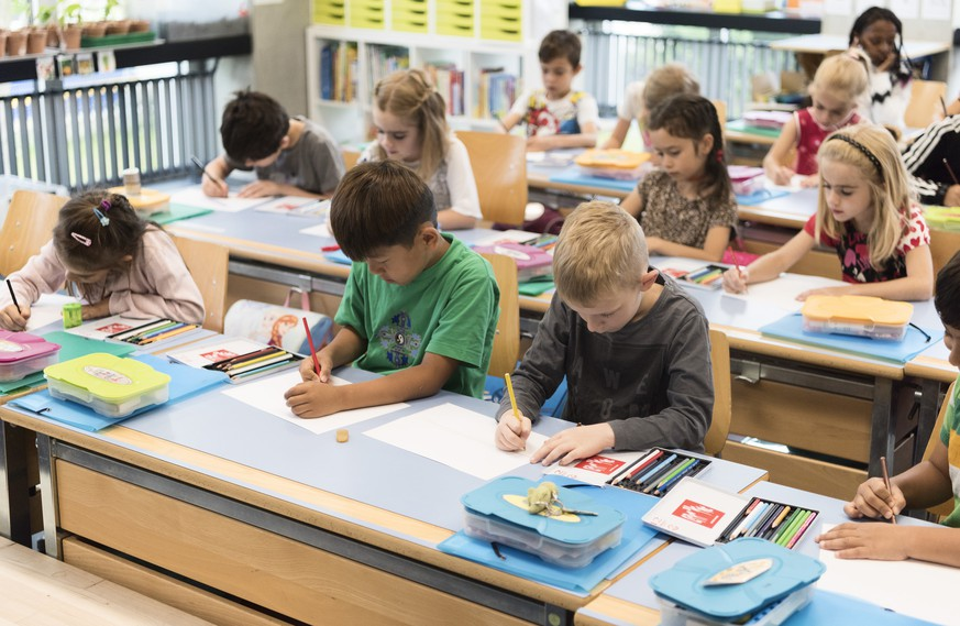 IM HINBLICK AUF DEN SCHULJAHRESBEGINN STELLEN WIR IHNEN FOLGENDES NEUES BILDMATERIAL VON DER PRIMARSCHULE DER SCHULE SUHR ZUR VERFUEGUNG ---Primary school class 1c pictured during a double science and reading lesson at the schoolhouse Vinci, Public School Suhr, Canton of Aargau, Switzerland, on June 25, 2018. The Public School Suhr consists of kindergartens, primary schools and senior classes. (KEYSTONE/Christian Beutler)
