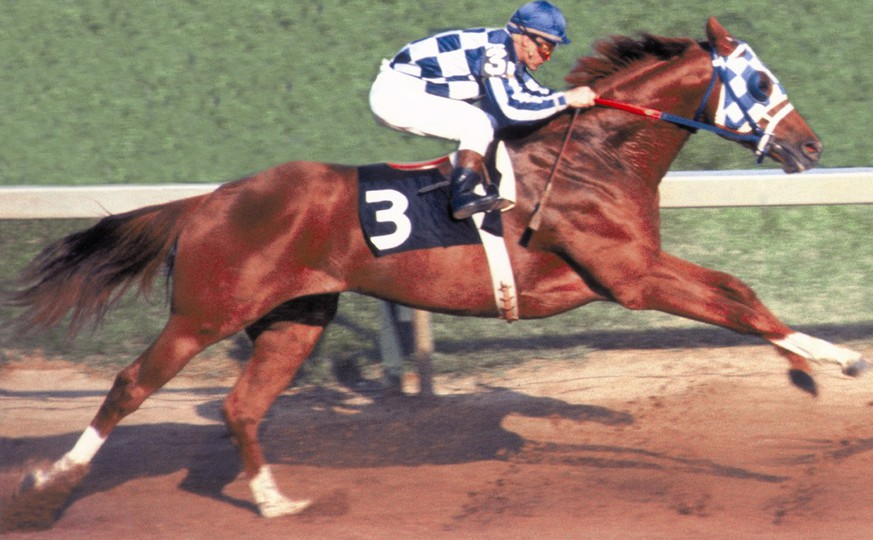 4.10.1989: Die Karriere und der Tod von Wunderpferd Secretariat
