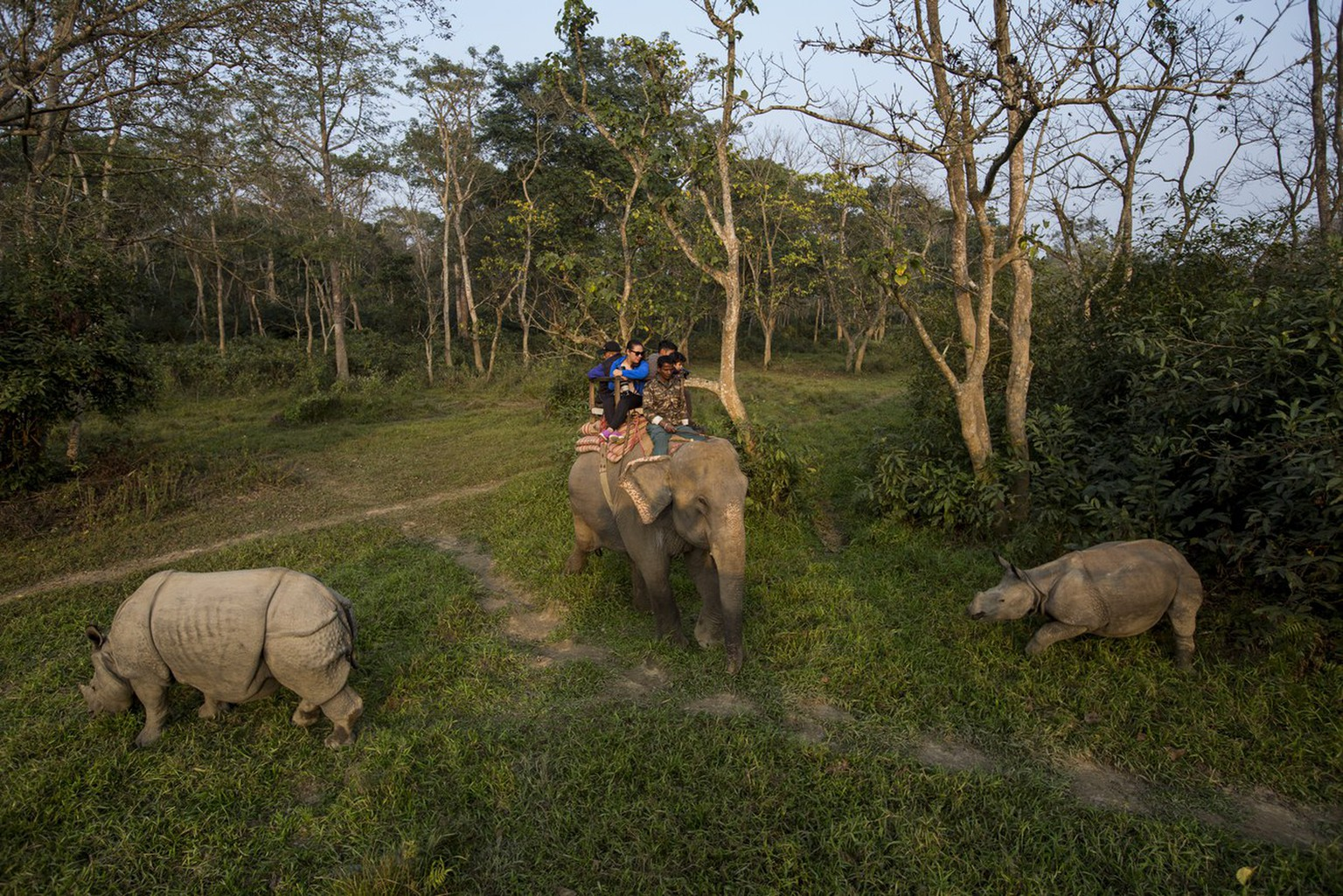 epa06405382 Tourists look at one-horned rhinos during an elephant ride as they visit Chitwan National Park, in Chitwan district, Nepal, 25 December 2017.  EPA/NARENDRA  SHRESTHA