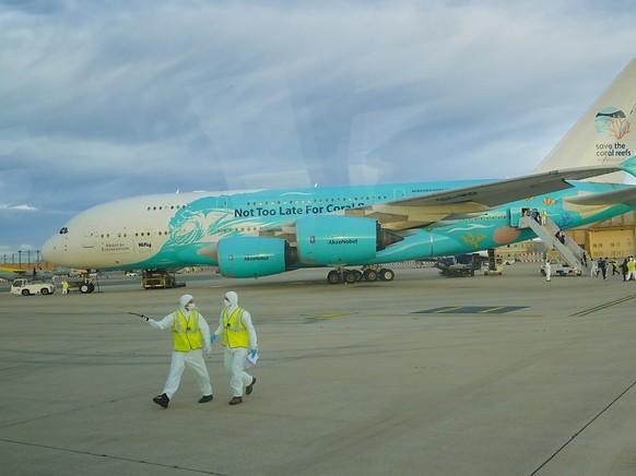Das Flugzeug mit den Rückkehrern aus Wuhan.