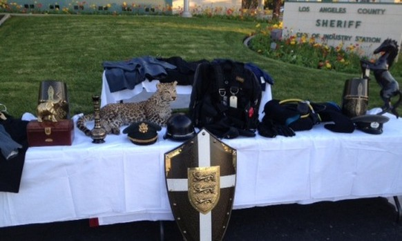 This Dec. 11, 2013 photo provided by the Los Angeles County Sheriff's Department shows recovered stolen items, including designer suits, medieval armor, jewelry, and a mounted snow leopard on display at news conference at Industry Sheriff's Station in City of Industry, Calif. Authorities have filed criminal charges against 14 teenagers who allegedly broke into a Southern California mansion while the owner was gone and held a party that caused more than $1 million in damage and losses. Los Angeles County prosecutors announced the charges Tuesday, March 18, 2014. Authorities say the party, promoted on social media, sent more than 100 teens to the mansion in La Habra Heights last November. The teens face misdemeanor and felony charges ranging from trespassing to burglary and theft. (AP Photo/Los Angeles County Sheriff's Department)