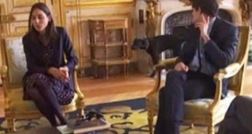 Macrons Hund pinkelt an Élysée-Kamin